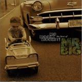 Mr. Big - The Big Bigger Biggest Hits