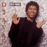 Djavan - Bird of Paradise