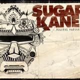 Sugar Kane - Digital Native