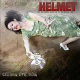Helmet - Seeing Eye Dog