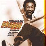 Shaggy - Boombastic Hits