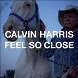 Calvin Harris - Feel So Close (Edição Remixada)