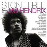 Jimi Hendrix - Stone Free-A Tribute