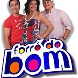 Forró Do Bom - Forró do Bom só as melhores 2012