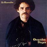 Zé Ramalho - Orquídea Negra